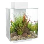 Garnelen Aquarium Fluval Edge II weiß nano Aquarium