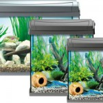 Garnelen Aquarium AquaArt Discovery Line alle