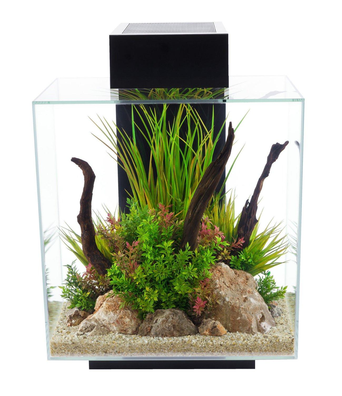 aquarium das gro e gu praxishandbuch bunte. Black Bedroom Furniture Sets. Home Design Ideas