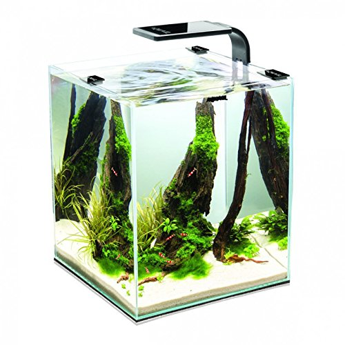 Aquael Shrimp Set Aquarium