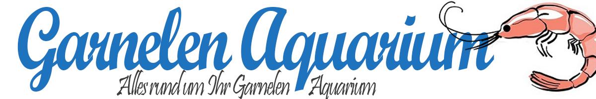 GarnelenAquarium.net