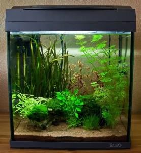 Tetra AquaArt Discovery Line 30l Nano Aquarium