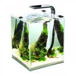 Aquael im Garnelen Aquarium Test