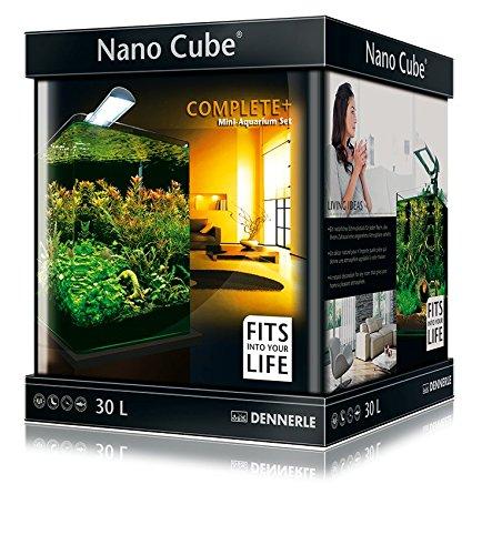 Garnelen Aquarium Beste Dennerle Nano Cube