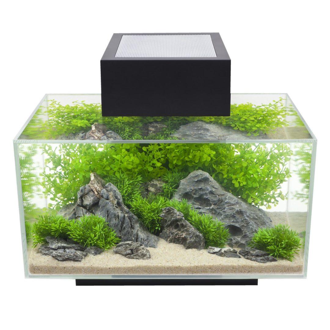 Beste Garnelen Aquarium Fluval Edge 1